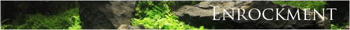 minibanner enrockment just aquascaping