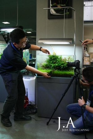 Fotoshoot von Aquascapes während des ADA-Seminars 2010 in Niigata, Japan.